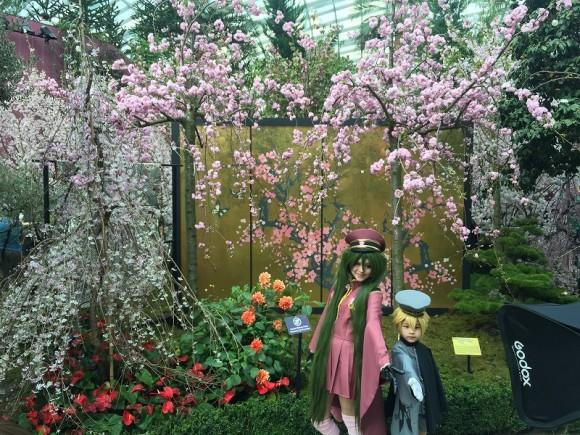 桜 コスプレ ガーデンズバイザベイ